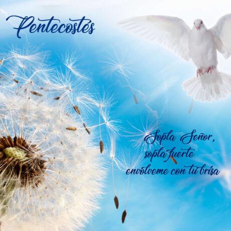 Pentecostés para jóvenes y adultos 🕊 Sopla Señor, envolvenos con Tu Brisa